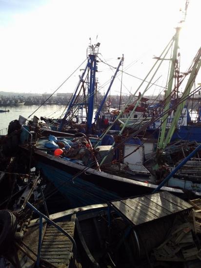 2013-10-19-26-agadir-le-port-11.jpg
