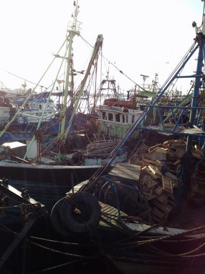 2013-10-19-26-agadir-le-port-15.jpg